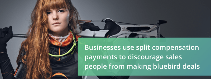 why split sales comp payments are a good idea